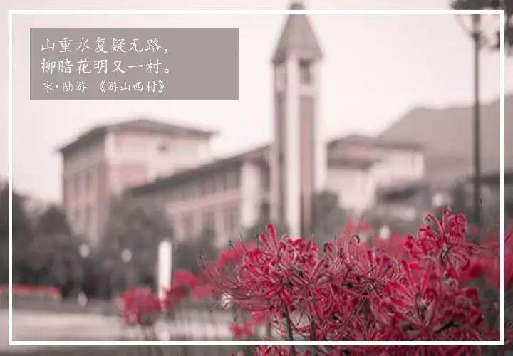 浙工大诗词大会 | 寻找ZJUT的诗和远方